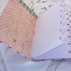 Mini journal 3